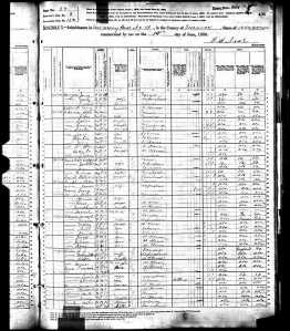 1880 United States Federal Census for Jerry Burgess