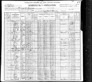 1900 United States Federal Census for Dave Burgess