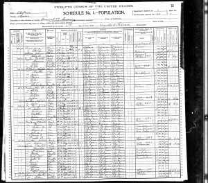 1900 United States Federal Census for Jerry Burgess
