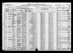 1920 United States Federal Census for Dave Burgess