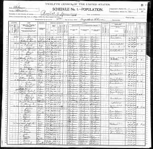 William Wesley 1900 Census
