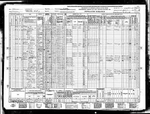 Mary Jane Burgess Wesley 1940 Census