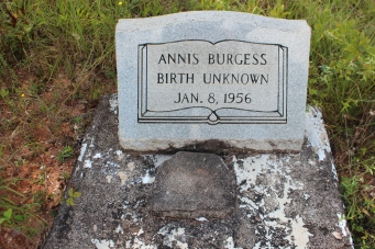 Annies Lee Locke Burgess